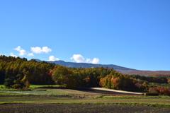 嬬恋村の紅葉2