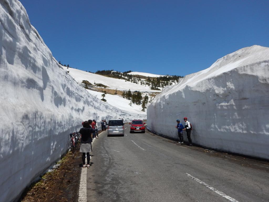 志賀草津道路 雪の回廊2