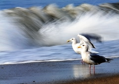 台風の余波