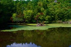 鶴ヶ原の景