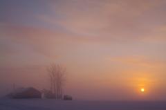 元旦 雪原の夜明け