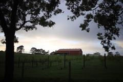 朝のブリスベン郊外 オーストラリアの風景写真