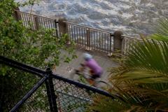 朝のブリスベンの自転車 オーストラリアの風景写真