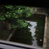 窓にフレーミングされた池 CANON RF35mm F1.8