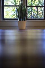 コテージの植物 オーストラリアの風景写真