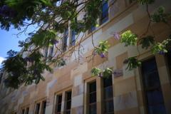 大学で咲く花 オーストラリアの風景写真