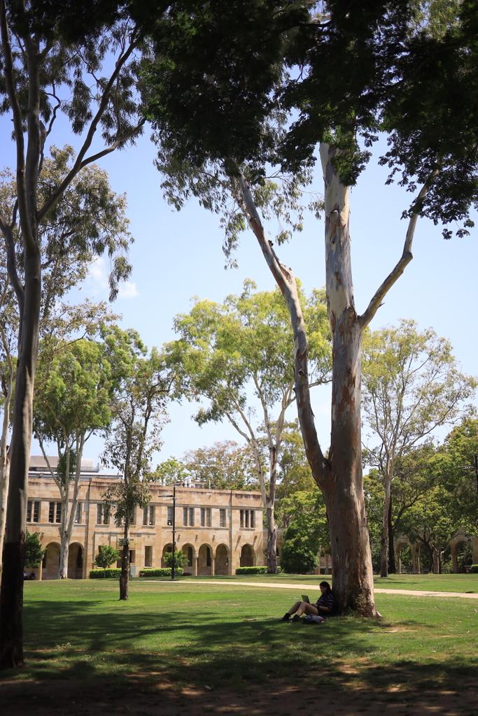 ブリスベンの大学 オーストラリアの風景写真