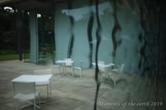 窓ガラスが作る風景 CANON RF35mm F1.8