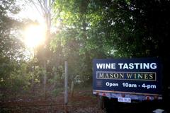 朝のMason Wines オーストラリアの風景写真