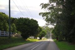 朝のブリスベン オーストラリアの風景写真