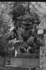 「熊野神社 狛犬」 (film)