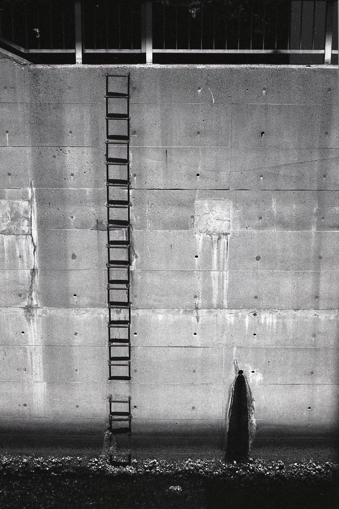 「Ladder」 (film)