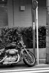 「散策カメラ11」 (film)