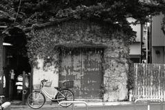 「bicycle」 (film:HR20)