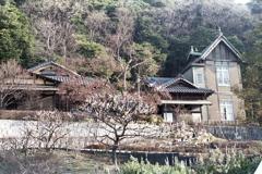 「根岸なつかし公園 旧柳下邸」 (film)