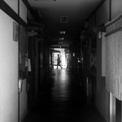 「6/9 通勤道すがら」 (digital)