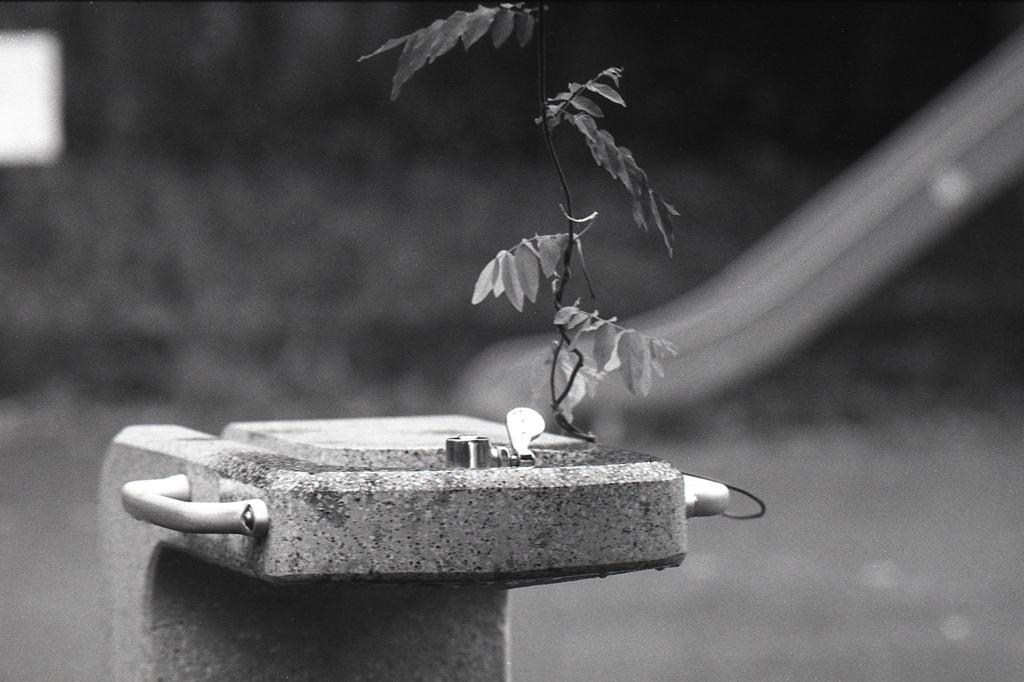 「雨上がりの公園で」 (film)