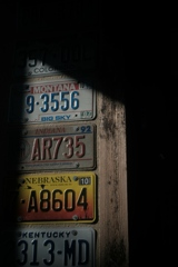 「plates」 (digital)