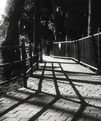 「遊歩道」 (film:HR20)