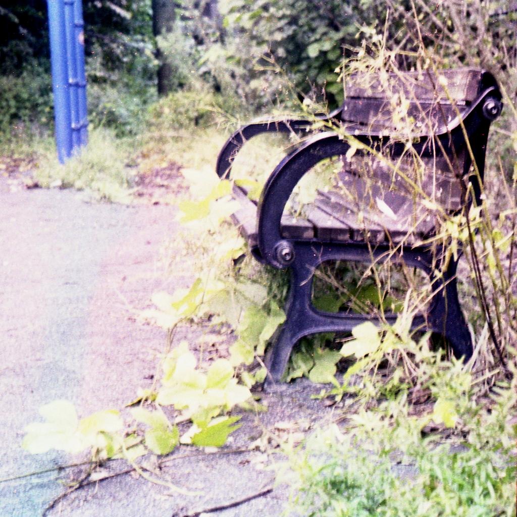 「bench」 (film)