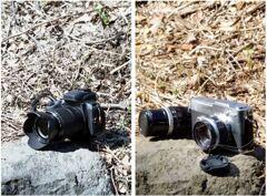 「3/14 本日的写真機」 (Digital & Film)