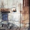 「Halfで行こう: 自転車通勤続く」 (film)