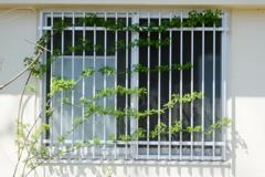 「窓」 (digital)