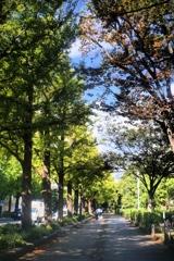 「10/21 山下公園で」 (digital)