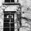 「窓」 (film:HR20)
