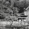 「旧柳下邸: monochrome」 (film)
