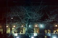 「黄金町 夜」 (film)