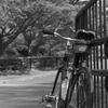 「続・自転車通勤1年記念」 (film)