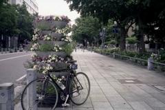 「6/10 街角flower」 (film)
