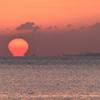 別府湾2021 3月-2 朝陽 ダルマ