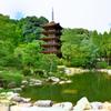 瑠璃光寺2019-1 庭園