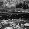 菅生の滝2020 8月-3 たきみ橋