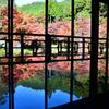 環境芸術の森2020 秋-4 風遊山荘③