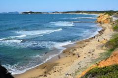 はまゆう公園2020 4月 浜辺①