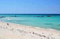 角島2020 3月 コバルトブルービーチ②