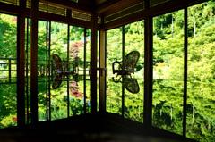 環境芸術の森2020 6月-3 風遊山荘①