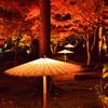 由志園2020 11月-1 日本庭園 ライトアップ②
