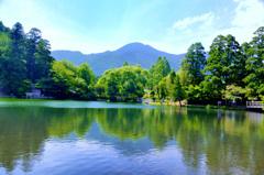 湯布院2018-2 夏 金鱗湖