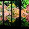 環境芸術の森2020 秋-4 風遊山荘②