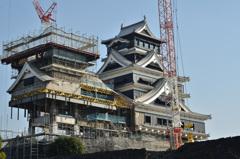 熊本城2019 大、小天守大規模復旧工事中