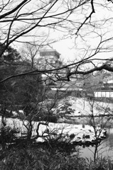 小倉城2021 1月-2 下屋敷庭園 ②
