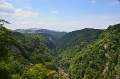 九重夢大吊橋2019-2 峡谷