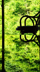 環境芸術の森2020 6月-3 風遊山荘 籐椅子
