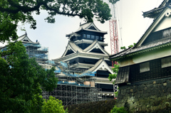 熊本城2020 7月-2 加藤神社より小天守修復中