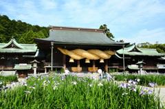 宮地嶽神社2020 拝殿