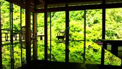 環境芸術の森2020 6月-3 風遊山荘②